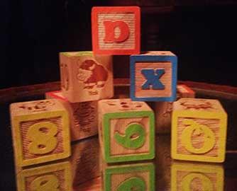 blocks as guinea pig chew toys