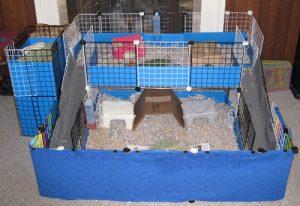 Cubes guinea pig cage