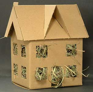 Hay house guinea pig toy