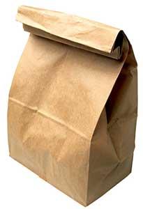 Paper Bag guinea pig toy