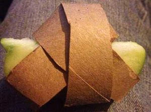 Hide fruit hay or vegetables in a toilet paper roll ball