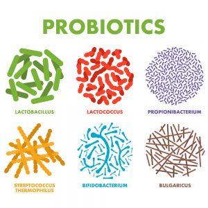 A picture of probiotics