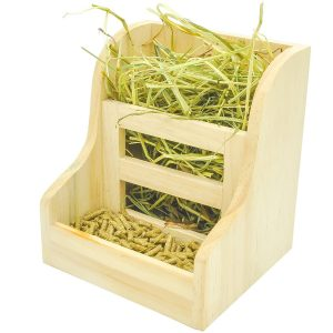 Second Best Guinea Pig Hay Feeder